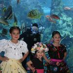 Te regalamos tickets para el Baja Splash Cultural Festival (Sorteo – finalizado)