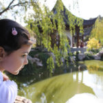 Miércoles Mudo: El jardín chino