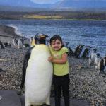 Miércoles Mudo: Los pingüinos