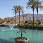 Miércoles Mudo: Oasis en el desierto californiano