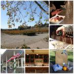 Miércoles Mudo: Catando vinos en Santa Bárbara