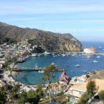 La Isla Catalina