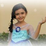 El vestido de Elsa (Frozen)