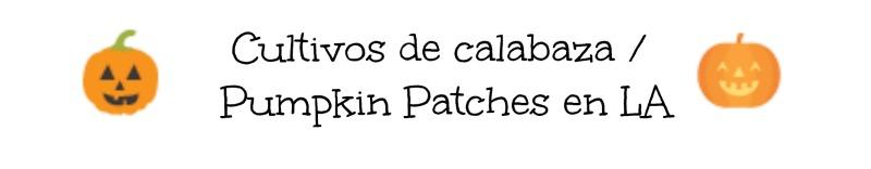 pumpkin-patches-la